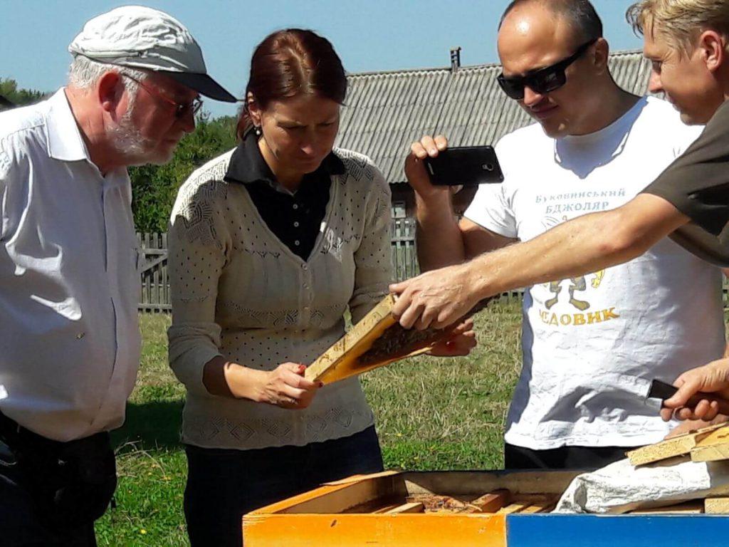 Відвідування пасік на Хотинщині